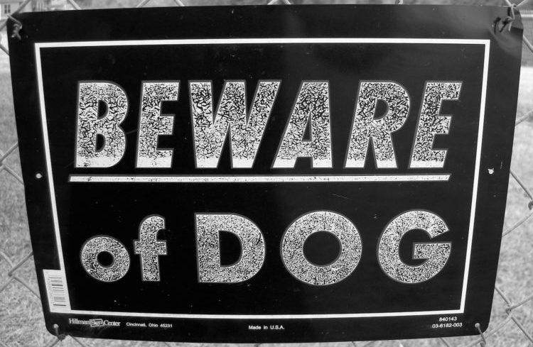 Beware of dog attack on S. Kentucky Avenue Oklahoma City