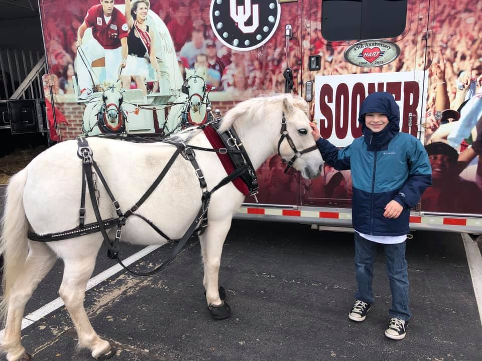 boomer sooner horse at 2019 turkey giveaway